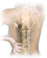 Fifth International Scientific Distance Congress on Spinal Disorders: InterSpine - 2008